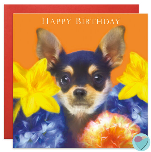 Birthday cards Mum Friend Chihuahua Mother/'s Day Toy Terrier from the dog UK