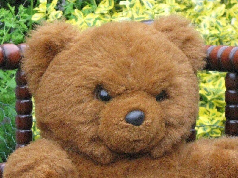 rot braun Sitting Teddy Bear Plush Plush Plush Oetker Vernel Holland 534324