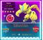 Pokemon-Sword-amp-Shield-6IV-EVENT-ZERAORA-MAX-EV-6IV-BRAND-NEW-zekrom-mewtwo thumbnail 1