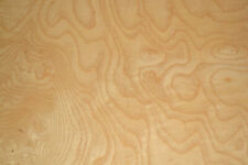 Ash Burl Raw Wood Veneer Sheet 135 X 25 Inches 142nd G8629 46