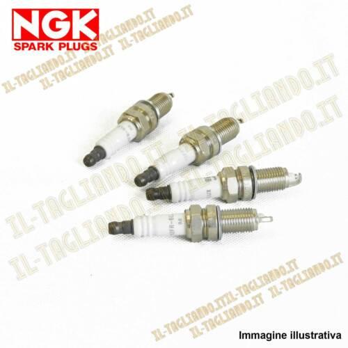 kit 4 Candele NGK per Ford Fiesta 6 VI 1.25 benzina 44 60 kw 60 82 cv dal 2008