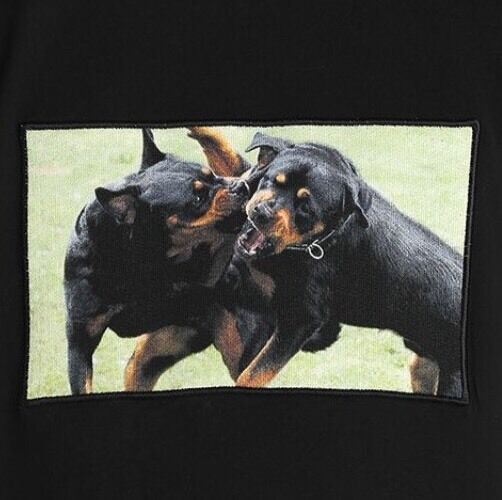 GIVENCHY T-Shirt Dogs Gr. M NEU
