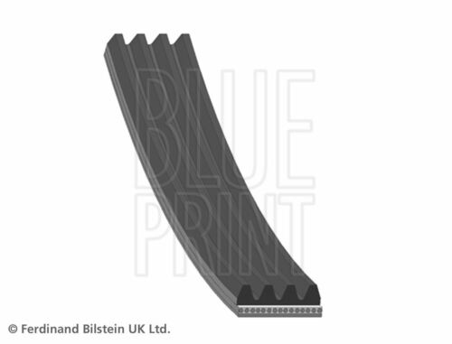 BLUE PRINT V-RIBBED BELT OE REPLACEMENT AD04R1615