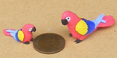 1:12 Scale Large /& Small Yellow Parrots Tumdee Dolls House Miniature Birds P6