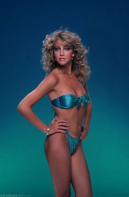 Hollywood 80/'s Stars Hunks Playboy 06 CHRISTIE BRINKLEY Poster Multiple Sizes