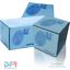 Pulizia cristalli anteriore CR-V Mk II RUNX 1 BLUE PRINT Pompa acqua lavaggio