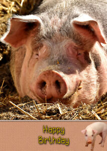 Image Is Loading Pig Animal Birthday Card Free Delivery