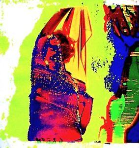 Marilyn-Monroe-1968-Bert-Stern-Silkscreen-Serigraph-Art-Last-Sitting-VTG-COA-6A