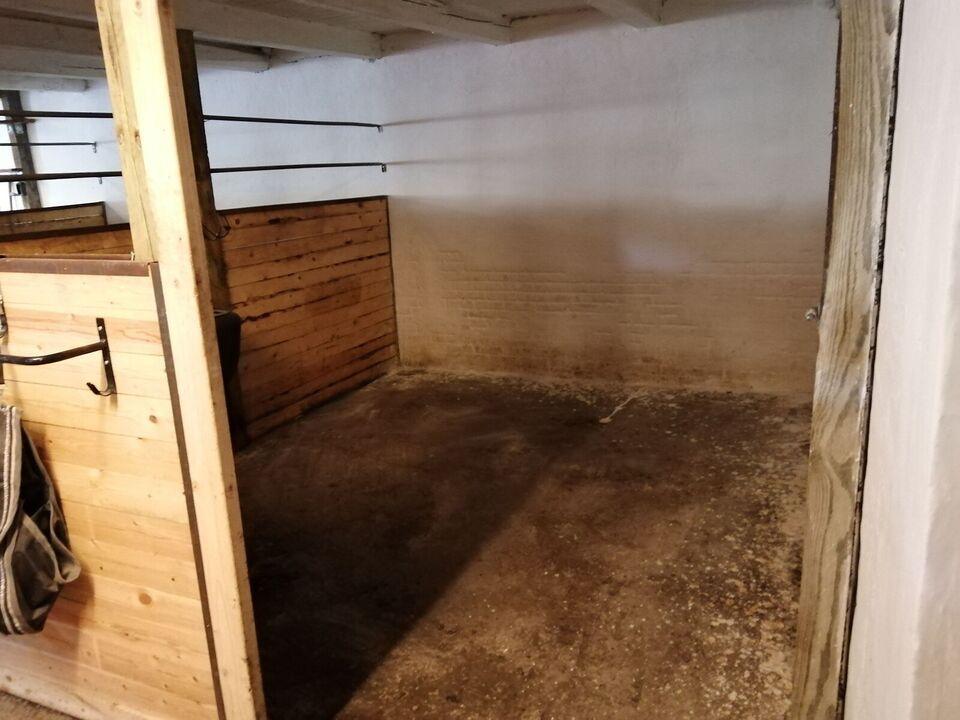 Opstaldning tilbydes i Lille stald