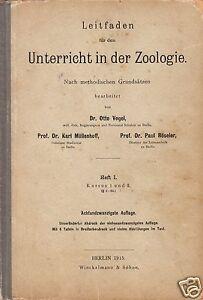 Leitfaden-fuer-den-Unterricht-in-der-Zoologie-1915