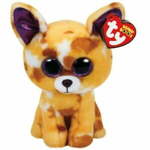 9c3fc086767 Ty Beanie Boo Plush - Pablo The Chihauhau 15cm. Be the first to write a  review. About this product. Stock photo  Picture 1 of 1. Stock photo