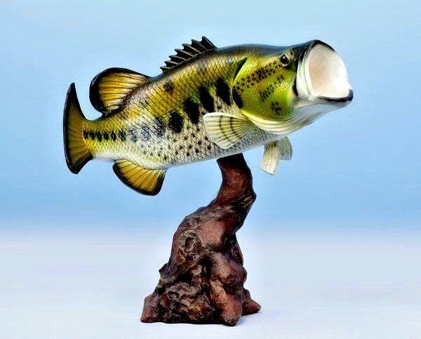 Taxidermie grande bouche Bass Mount 20  - Poissons Replica Trophy-SUPERBE POISSON DECOR