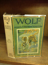 Albert Payson Terhune - WOLF - 1st ed in jacket!