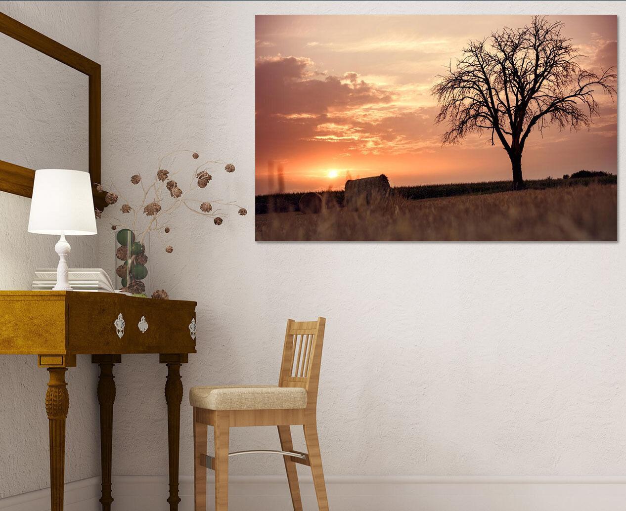 3D Einsamer Baum 464 Fototapeten Wandbild  BildTapete Familie AJSTORE DE
