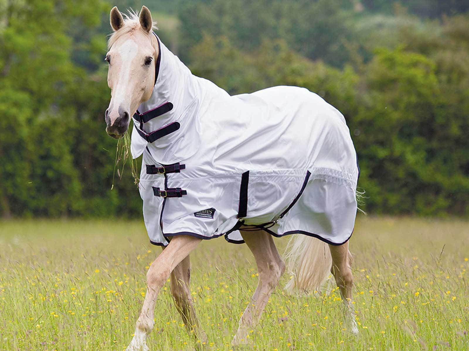 Shires Tempest Original Fly Combo
