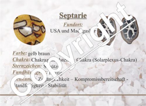 Septarie XXL flacher Trommelstein Handschmeichler gute Qualität ca 85-95 mm