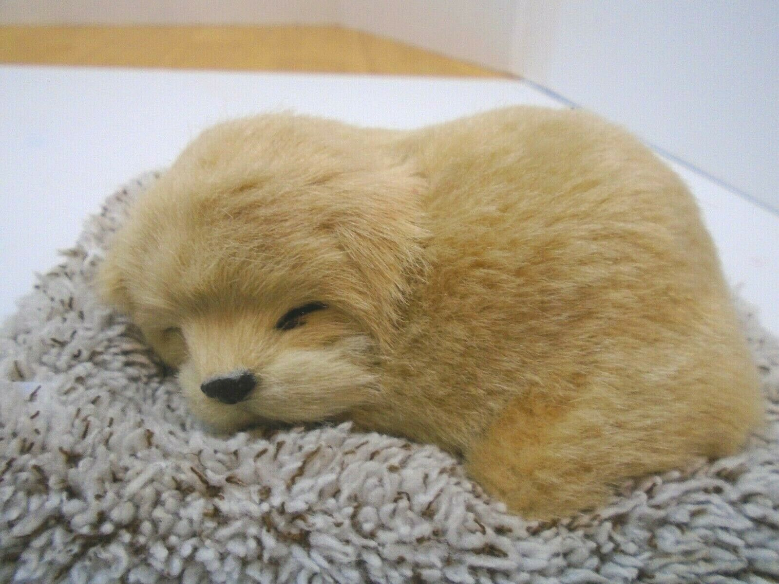 Perfect Petzzz Mini Baby Golden Retriever Puppy Dog For Sale Online