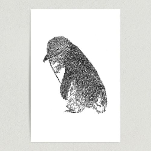 "ArtPrintJoy Penguin Sketch Illustration Art Print Poster N1007 12/""x18/"" Wall Art"