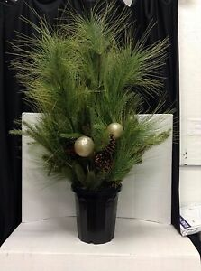 Details About Frontgate Sun Valley Christmas Pine Urn Filler Greenery Planter Home Decor