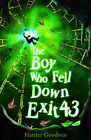 The Boy Who Fell Down Exit 43 by Harriet Goodwin (Paperback, 2009)