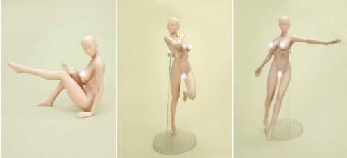 1//6 Unpainted Female Head For Phicen Jodoll Kumik Hot Toys Suntan Figure❶USA❶