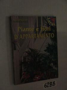 PIANTE-E-FIORI-D-039-APPARTAMENTO-62B5