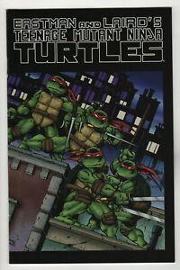 Teenage-Mutant-Ninja-Turtles-Color-Special-1-2009-Mirage-Error-Variant-NM