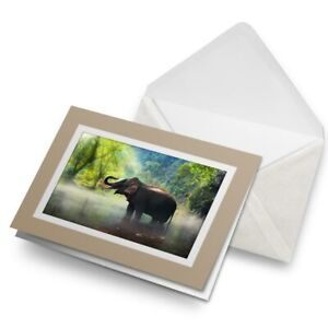 Greetings-Card-Biege-Jungle-Elephant-in-Nature-14494