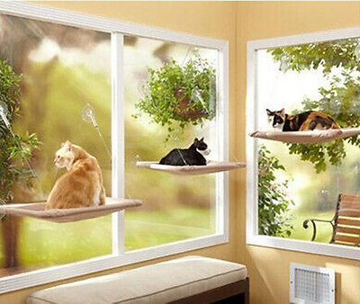 New Cat Window Mounted Sunshine Bed Suction Cups Sunny Seat With Box