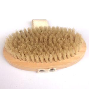 Professional-Dry-Skin-Body-Brush-with-Cactus-Bristles-Hard-Strength-Brush-GO9