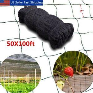 100-039-X50-039-Anti-Bird-Baseball-Poultry-Soccer-Game-Fish-Netting-2-039-039-Mesh-Holes-US