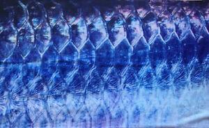 Tarpon-Crome-Barra-Face-Sheild-Bandana-Neck-Scarf-Headwear-UV-sock-for-fishing
