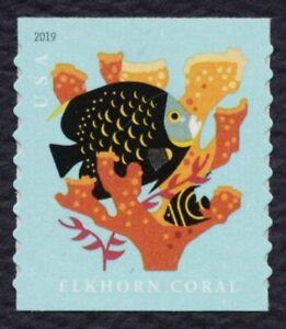 #5369a Coral Arrecifes, Aqua Color Omitted-Major Error