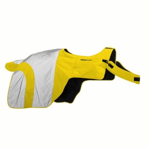 Equisafety Mercury Signalfarbe schützende Pferde Reiten Viertel Niere Bogen