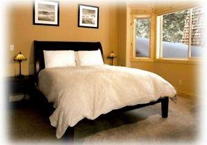 SilkSation Silk Filled Comforter Queen for Fall//Spring