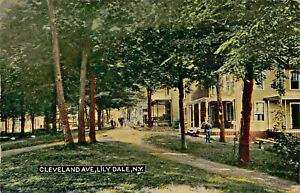 LILY-DALE-NEW-YORK-CLEVELAND-AVENUE-1913-POSTCARD