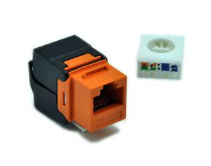 Astounding 24Pcs Lot Gigabit Rj45 Cat5E Keystone Jack Unshielded Toolfree Wiring Digital Resources Honesemecshebarightsorg