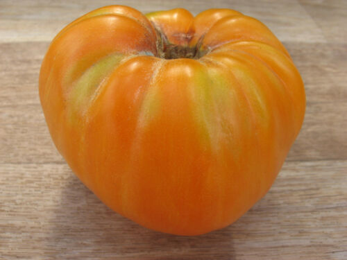 Tomato Orange Jazz organic non gmo Ukraine 20 seeds Farmer/'s dream