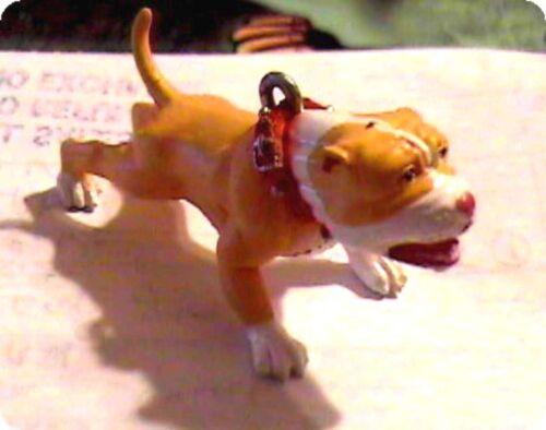 Hood Hound Dog WICKED PINK NOSE PITBULL DOG