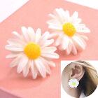 Lovely Sweet Girls Women White Daisy Flower Stud Earrings Cute Ear Studs Gift