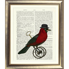 ART PRINT ON ORIGINAL ANTIQUE BOOK PAGE Bird Vintage Picture Animals Poster