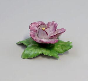 9959055-Porcelain-Table-Flower-Rose-Purple-Ens-Handmodelliert-4-5x5cm