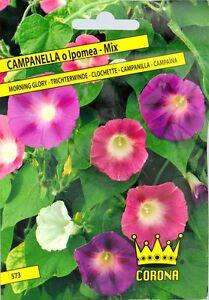 Fiori A Campanella.Bustina Semi Fiori Campanella O Ipomea Mix Ebay