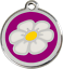 RED-DINGO-DAISY-Engraved-Dog-Cat-ID-identity-Tags-discs-ALL-COLOURS-1DA thumbnail 11