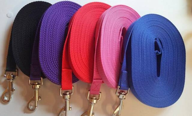 20mm Top Quality TRAINING/TRACKING/LUNGE/REIN/LEADS Dog horse webbing Line
