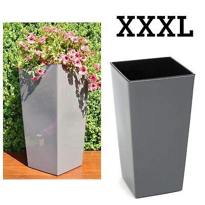 Blumenkübel Anthrazit Hochglanz Eckig Pflanzeinsatz Blumentopf Xxxl (h:75cm) Ein Unbestimmt Neues Erscheinungsbild GewäHrleisten
