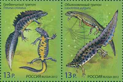 RUSSIA 2012, Joint issue Russia - Belarus, Fauna, Newts, MNH