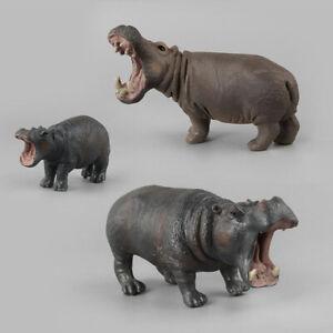 Detalles De Simulación De Niños Animales Salvajes Hipopótamo Hipopótamo Figura Juguete De Plástico Modelo N7 Para Adultos Ver Título Original