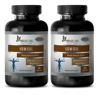 Antioxidant Mix - Stem Cell - Organic Blue Green Algae - Weight Loss Tablets - 2