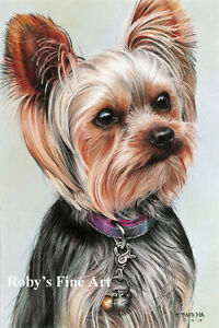 Yorkshire-Terrier-Dog-Art-5-034-x7-034-Print-034-Elle-034-Giclee-by-Realism-Artist-Roby-Baer